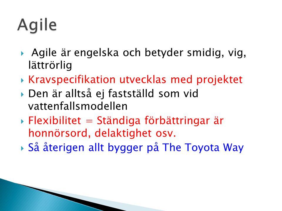 Agile Agile är engelska och betyder smidig, vig, lättrörlig
