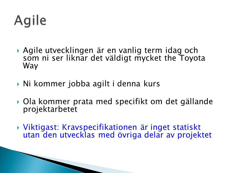 Agile Agile utvecklingen är en vanlig term idag och som ni ser liknar det väldigt mycket the Toyota Way.