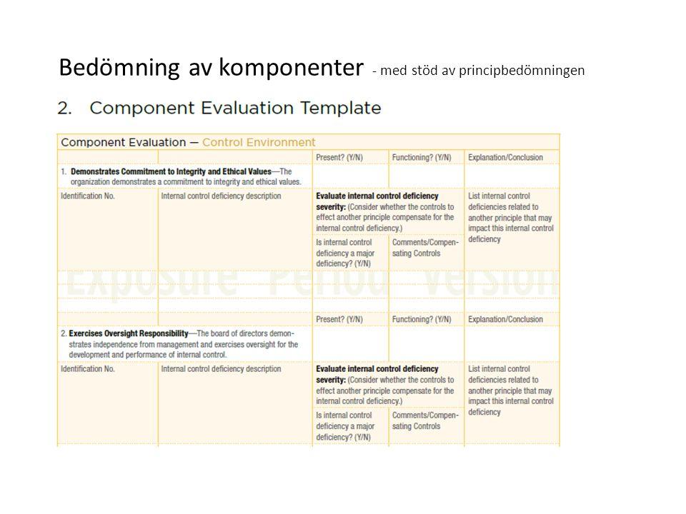 Bedömning av komponenter - med stöd av principbedömningen