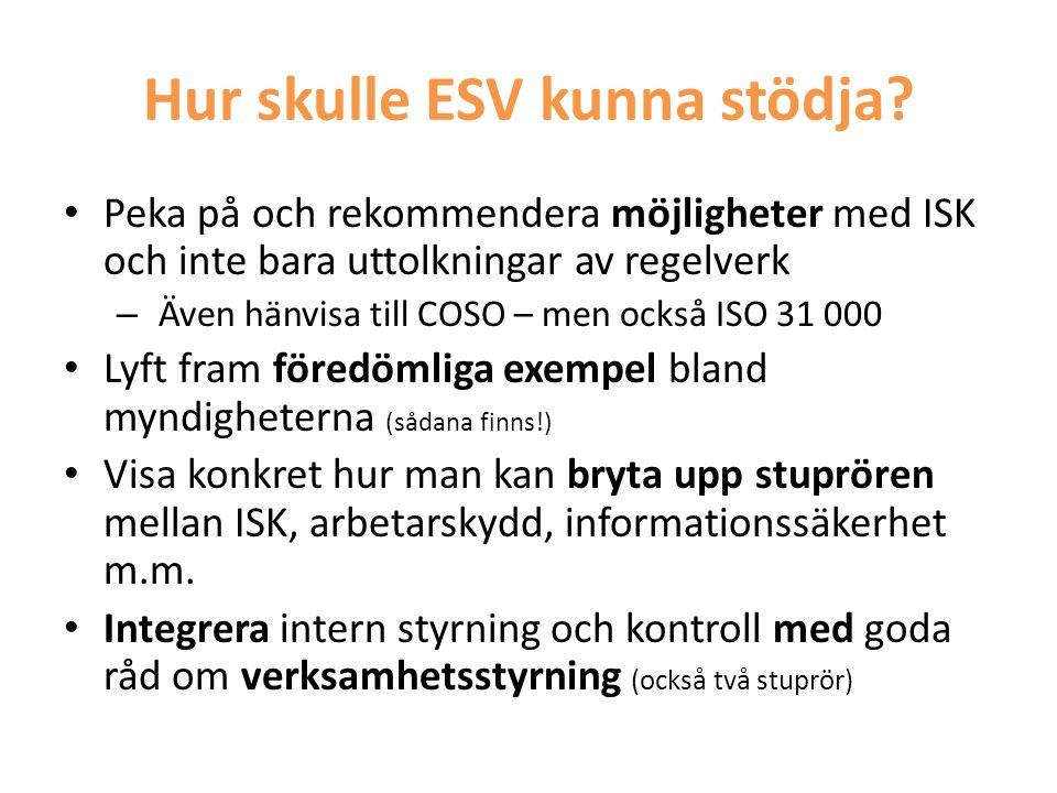 Hur skulle ESV kunna stödja