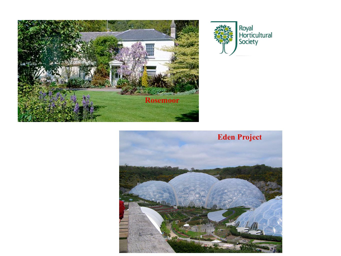 Rosemoor Eden Project