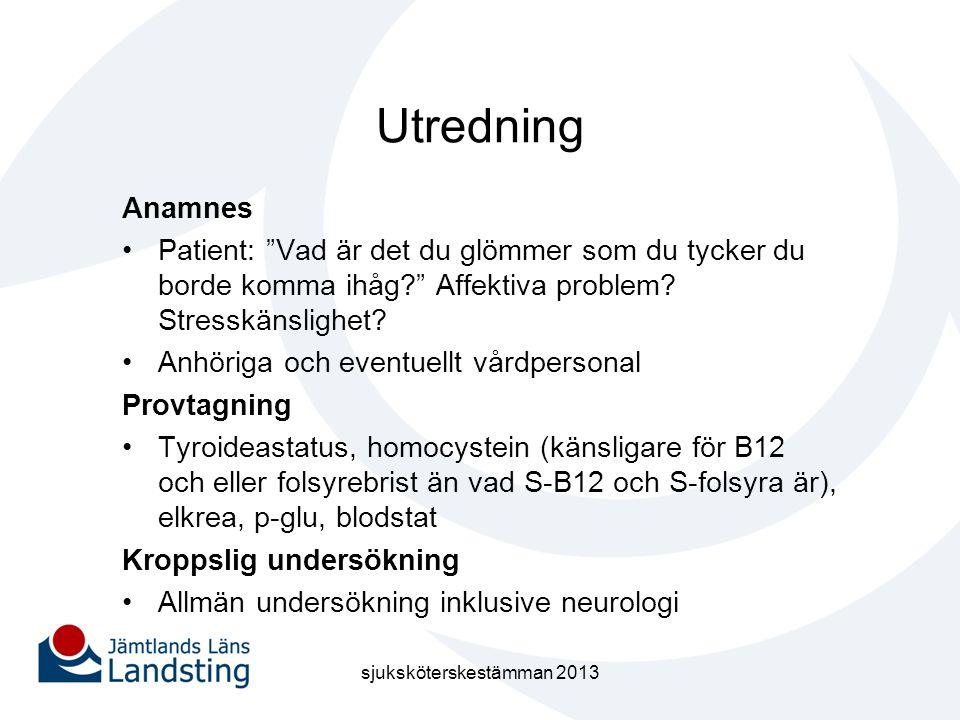sjuksköterskestämman 2013