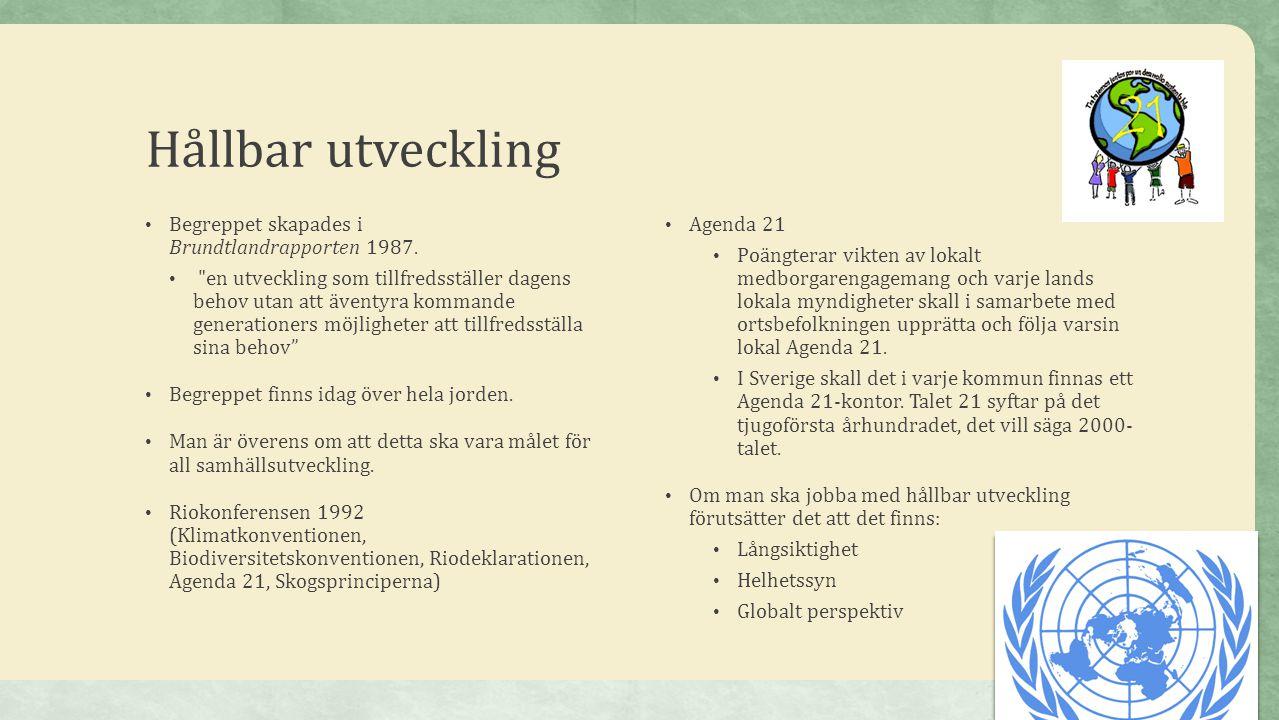 Hållbar utveckling Begreppet skapades i Brundtlandrapporten 1987.