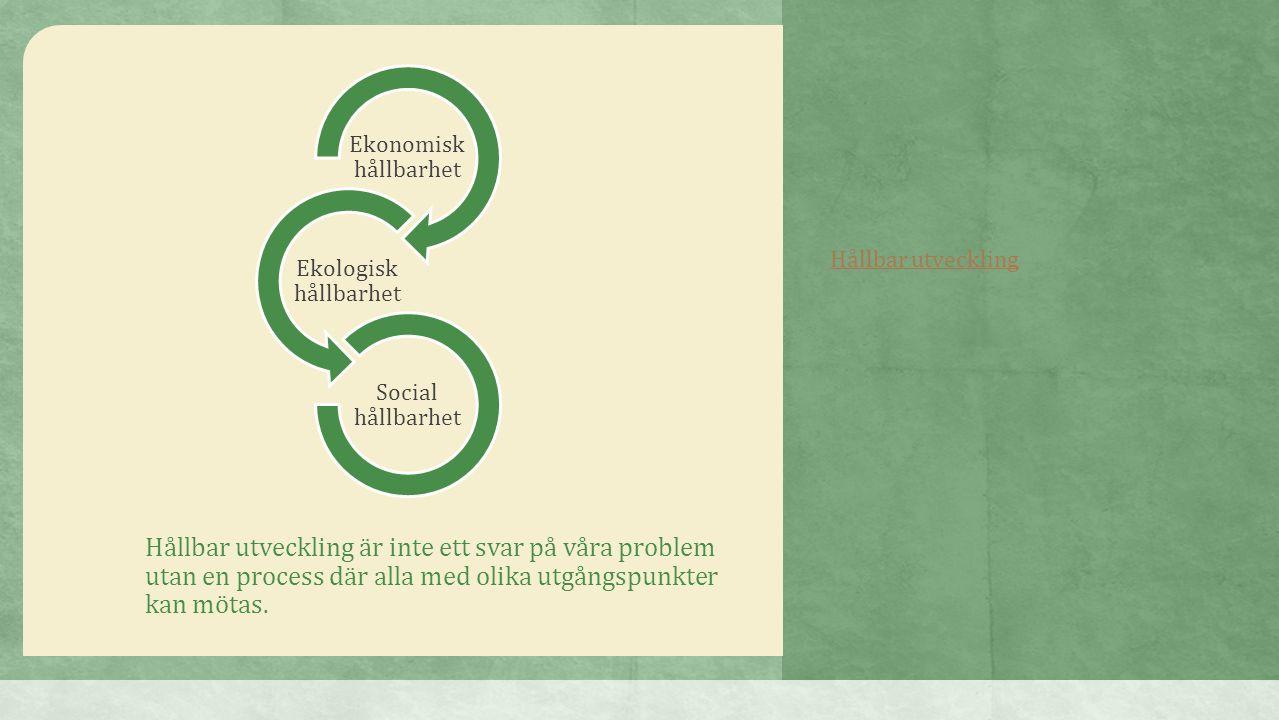 Ekonomisk hållbarhet Ekologisk hållbarhet. Social hållbarhet. Hållbar utveckling.