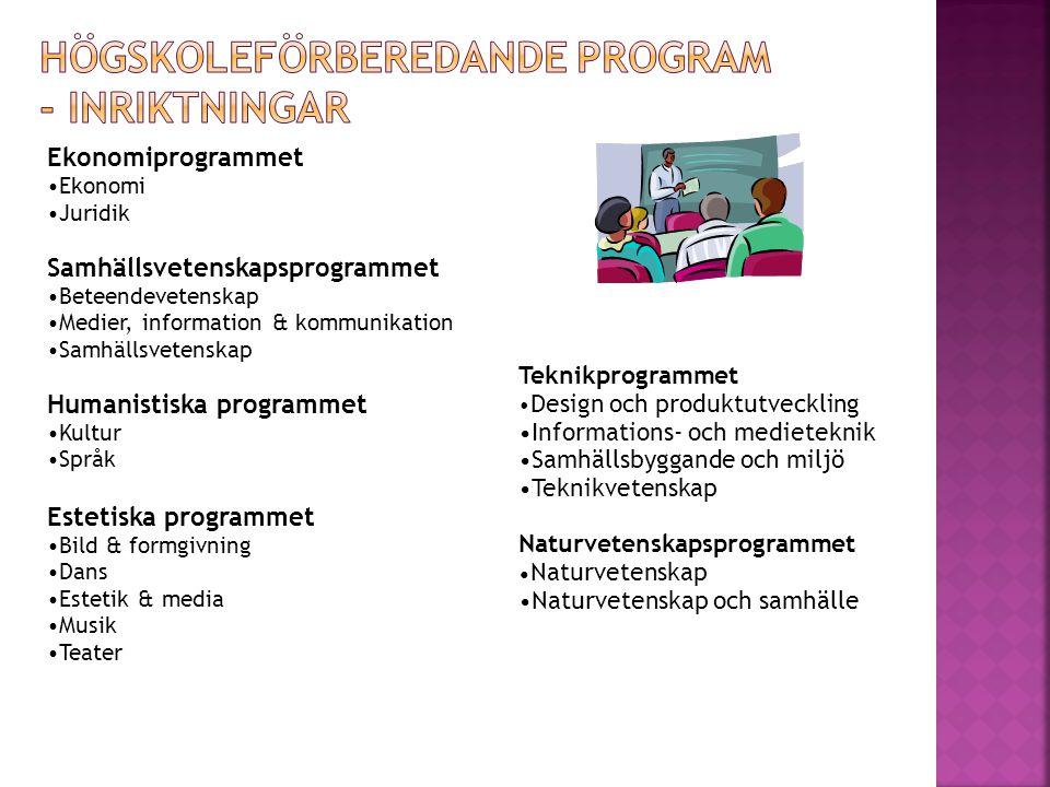Högskoleförberedande program - inriktningar