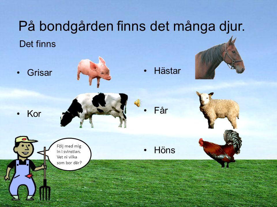 På bondgården finns det många djur.