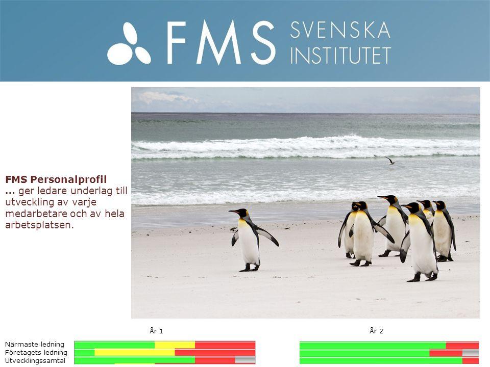 FMS Personalprofil … ger ledare underlag till utveckling av varje medarbetare och av hela arbetsplatsen.