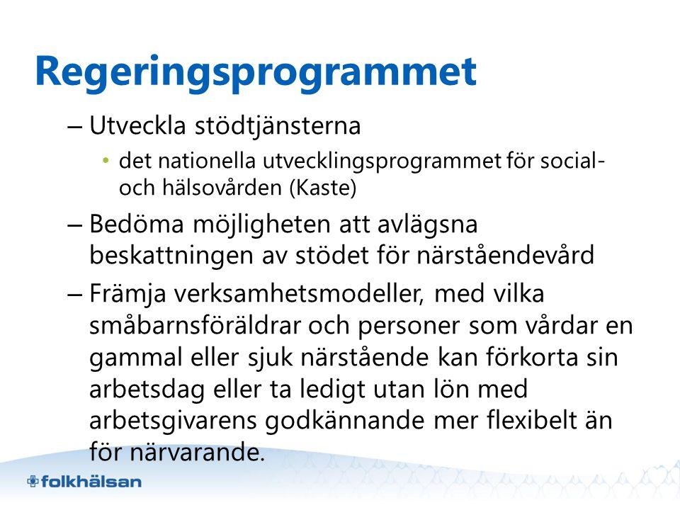 Regeringsprogrammet Utveckla stödtjänsterna
