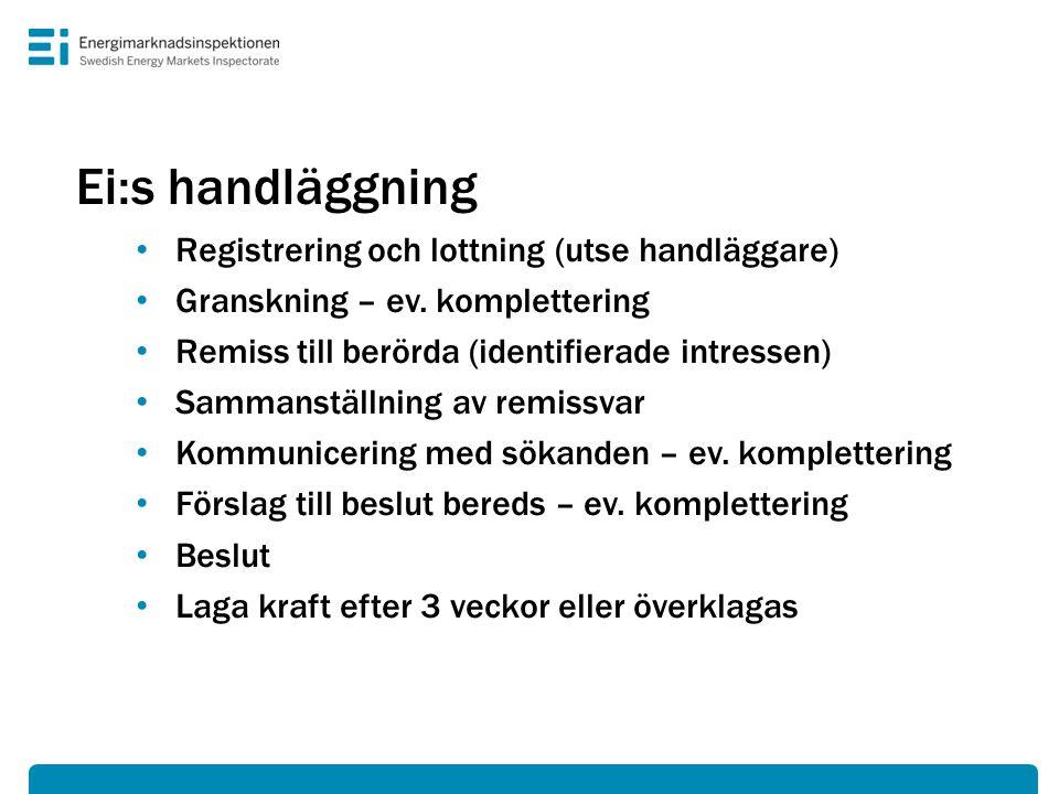 Ei:s handläggning Registrering och lottning (utse handläggare)