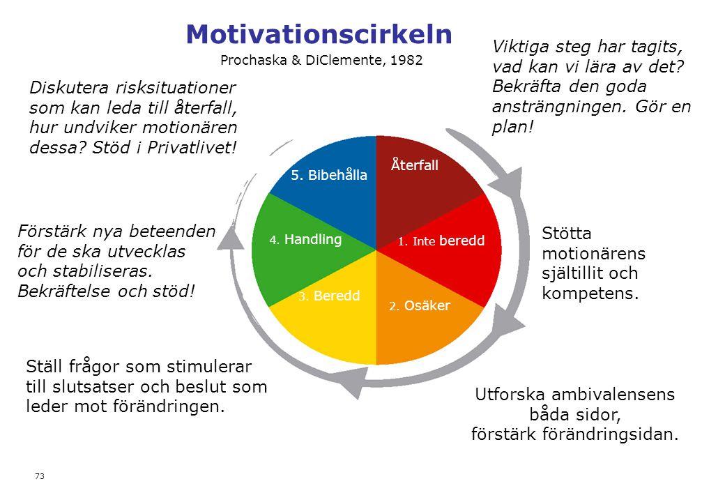 Motivationscirkeln Viktiga steg har tagits, vad kan vi lära av det Bekräfta den goda ansträngningen. Gör en plan!
