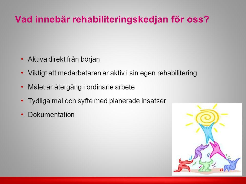 Vad innebär rehabiliteringskedjan för oss