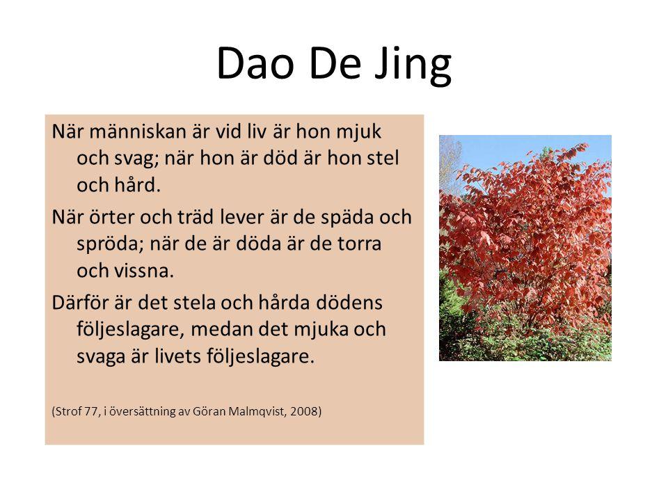 Dao De Jing När människan är vid liv är hon mjuk och svag; när hon är död är hon stel och hård.