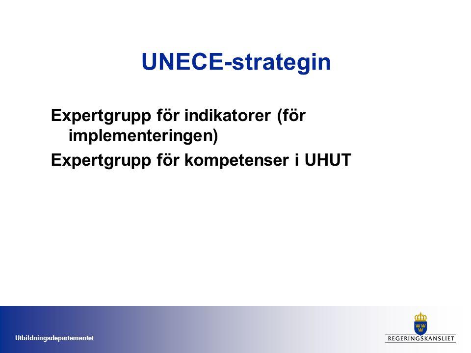 UNECE-strategin Expertgrupp för indikatorer (för implementeringen)