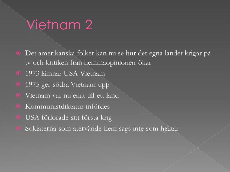 Vietnam 2 Det amerikanska folket kan nu se hur det egna landet krigar på tv och kritiken från hemmaopinionen ökar.