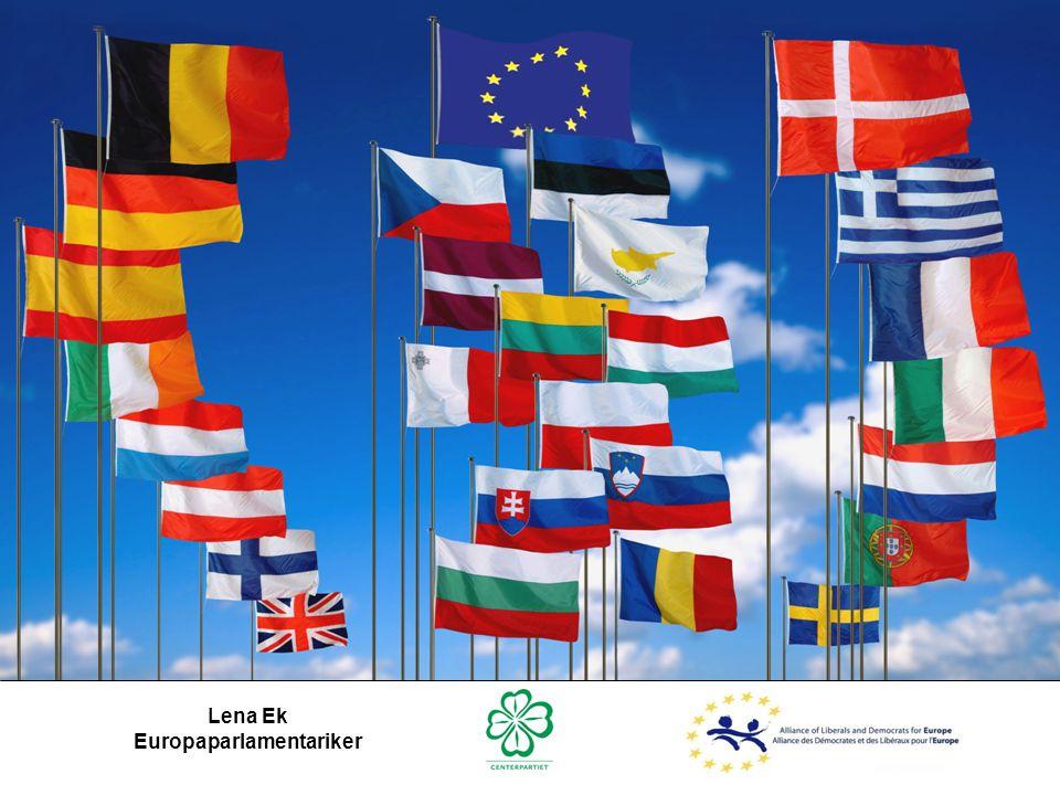 Europaparlamentariker