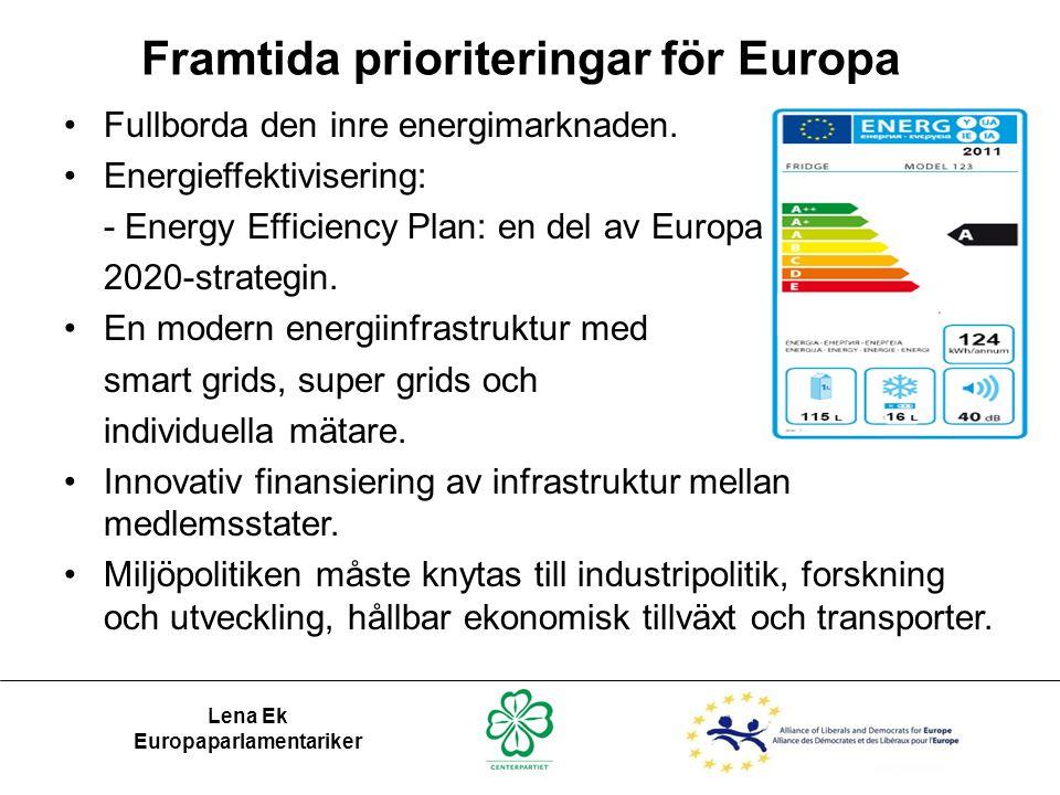 Framtida prioriteringar för Europa Europaparlamentariker