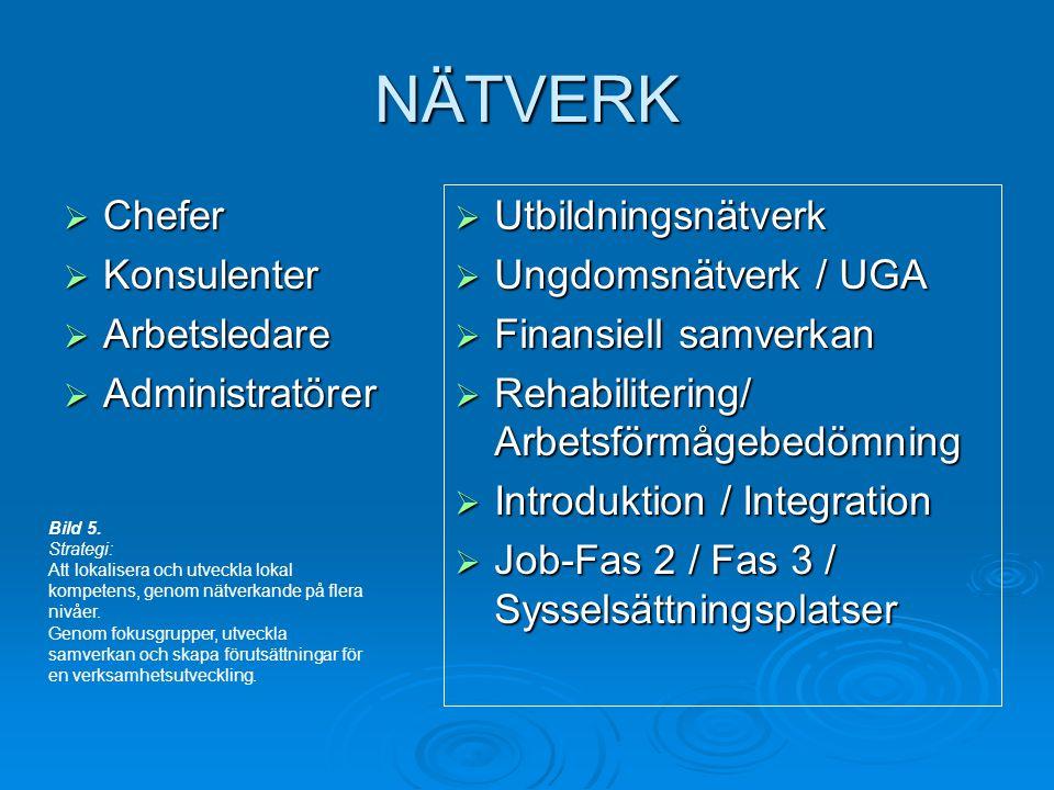 NÄTVERK Chefer Konsulenter Arbetsledare Administratörer