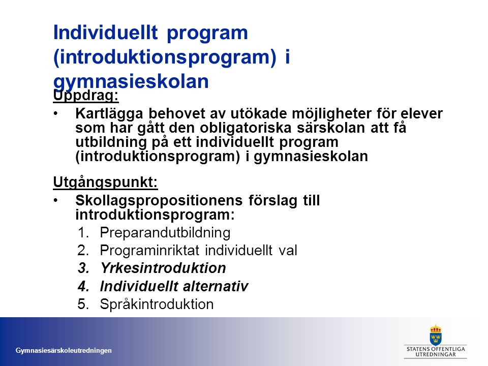 Individuellt program (introduktionsprogram) i gymnasieskolan