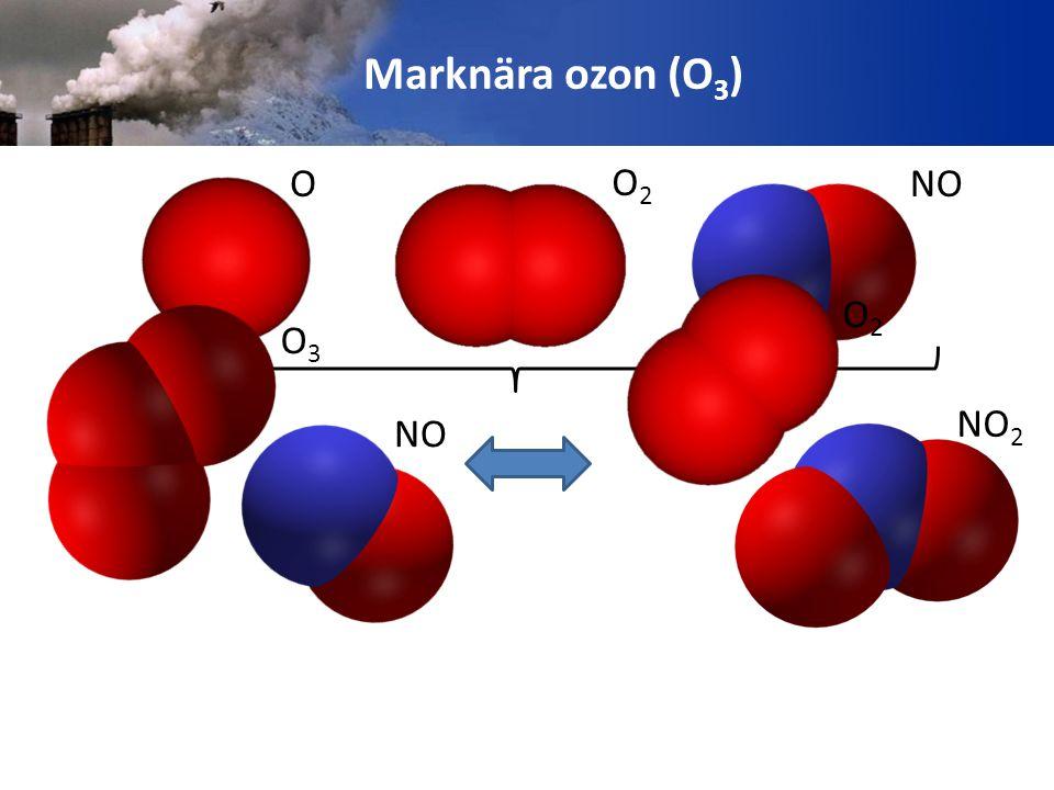 Marknära ozon (O3) O O2 NO O3 NO NO2 O2