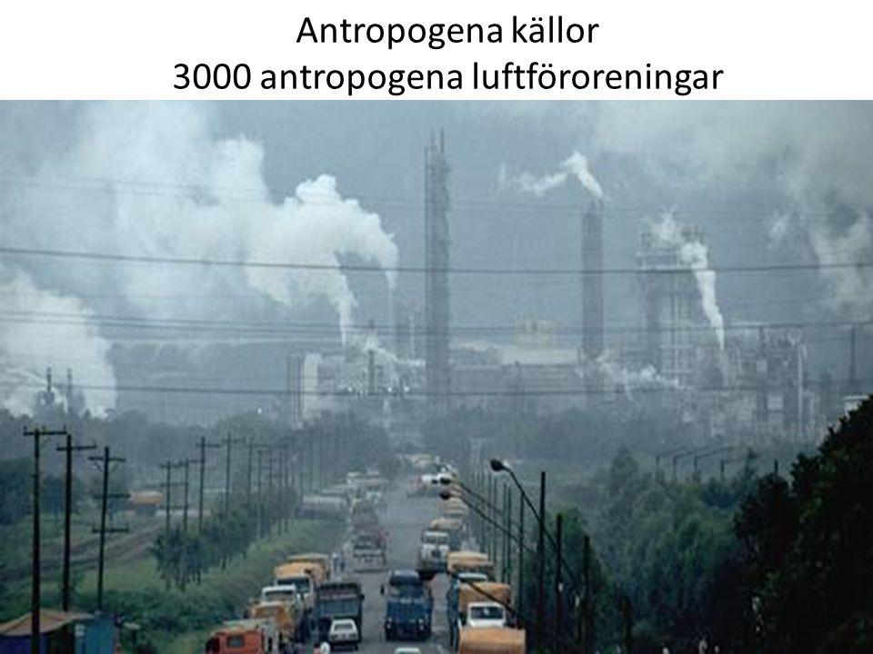 3000 antropogena luftföroreningar