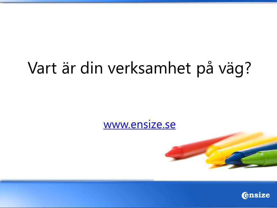 Vart är din verksamhet på väg www.ensize.se