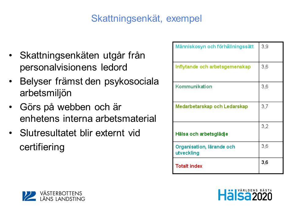 Skattningsenkät, exempel