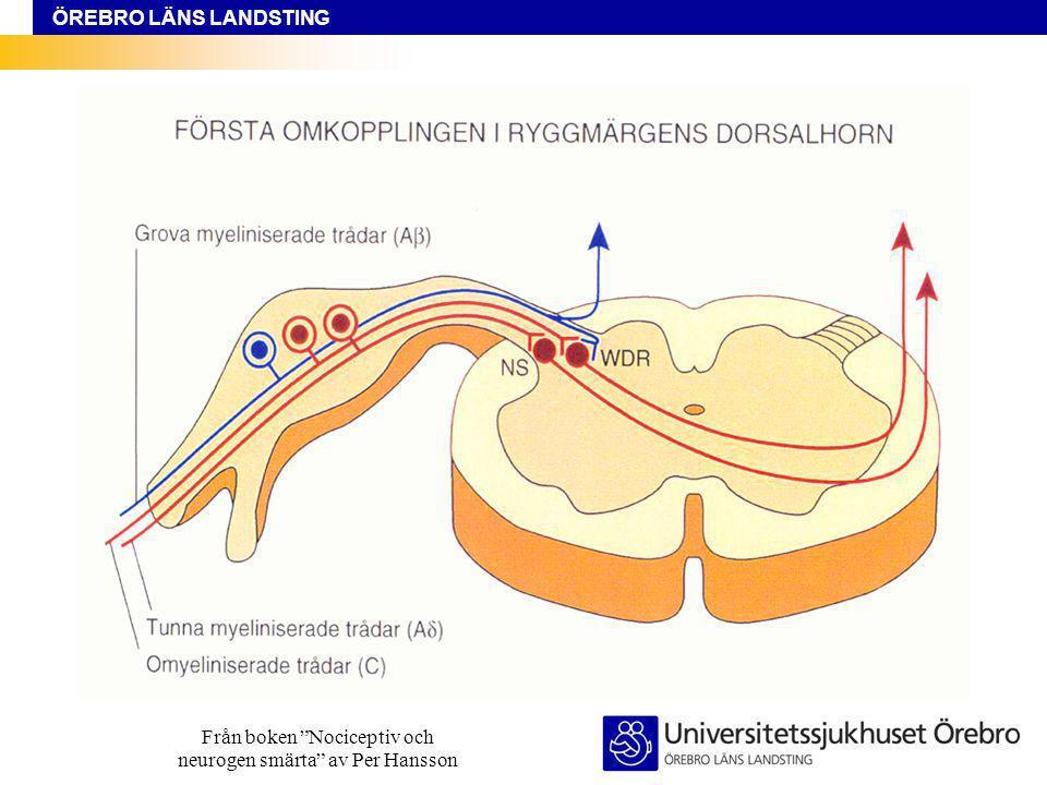 Från boken Nociceptiv och neurogen smärta av Per Hansson