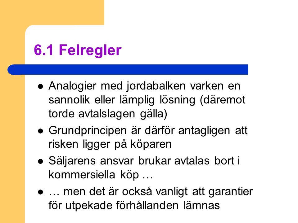 6.1 Felregler Analogier med jordabalken varken en sannolik eller lämplig lösning (däremot torde avtalslagen gälla)