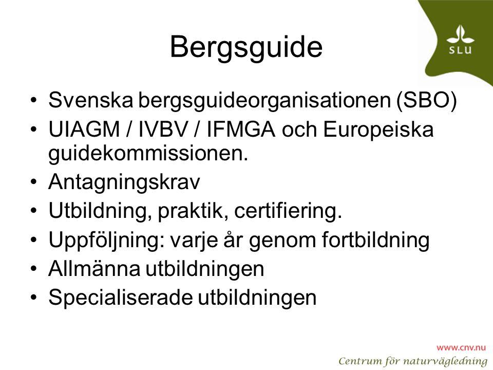 Bergsguide Svenska bergsguideorganisationen (SBO)