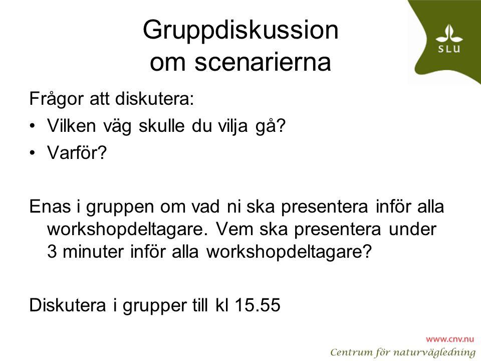 Gruppdiskussion om scenarierna
