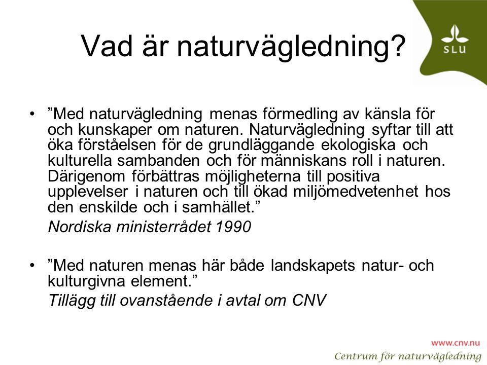 Vad är naturvägledning