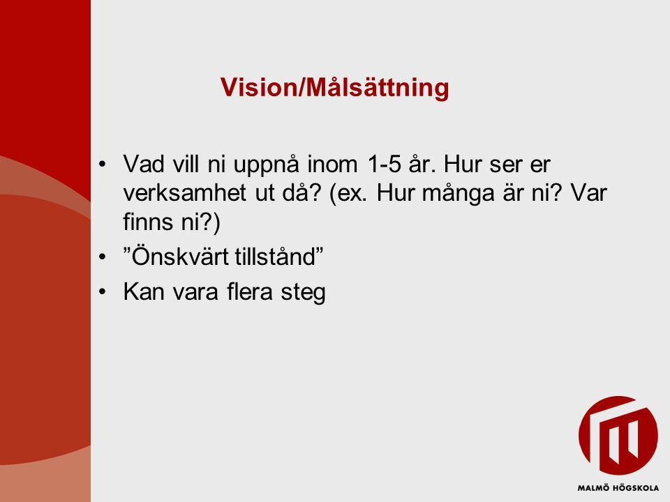 Vision/Målsättning Vad vill ni uppnå inom 1-5 år. Hur ser er verksamhet ut då (ex. Hur många är ni Var finns ni )