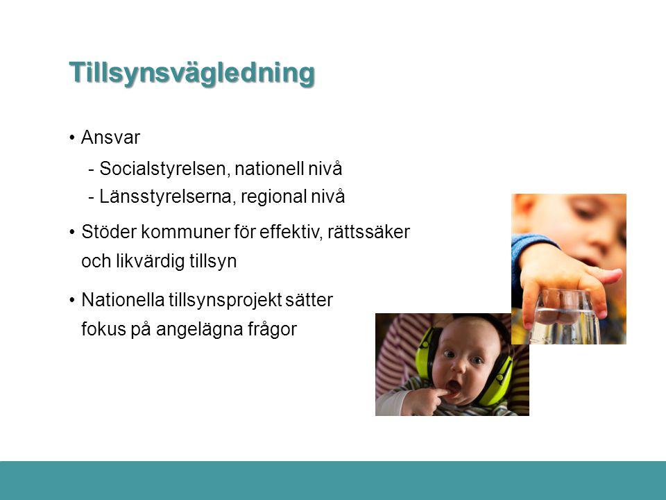 Tillsynsvägledning Ansvar - Socialstyrelsen, nationell nivå
