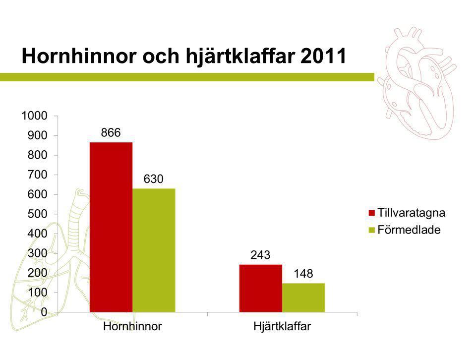 Hornhinnor och hjärtklaffar 2011