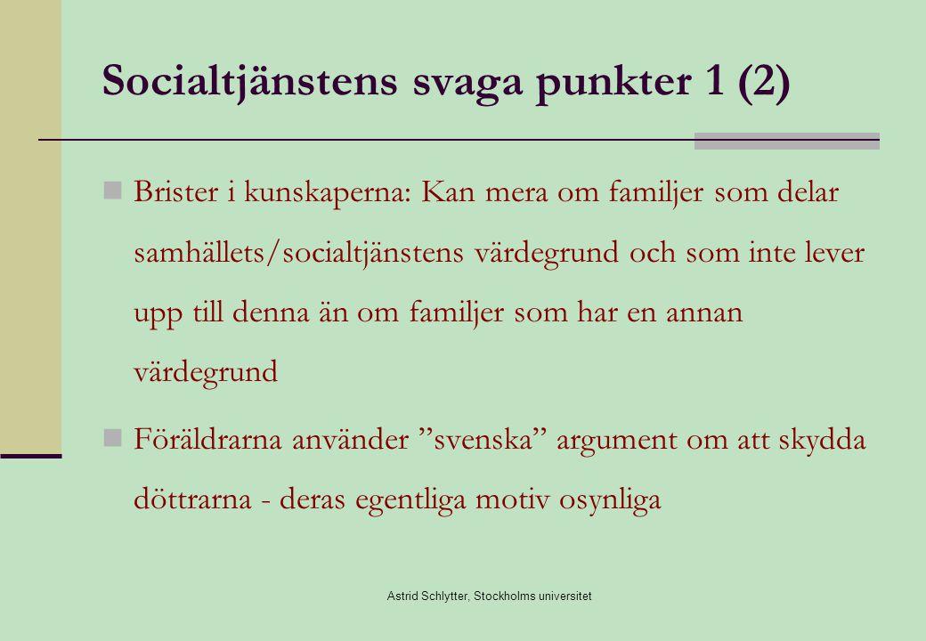 Socialtjänstens svaga punkter 1 (2)