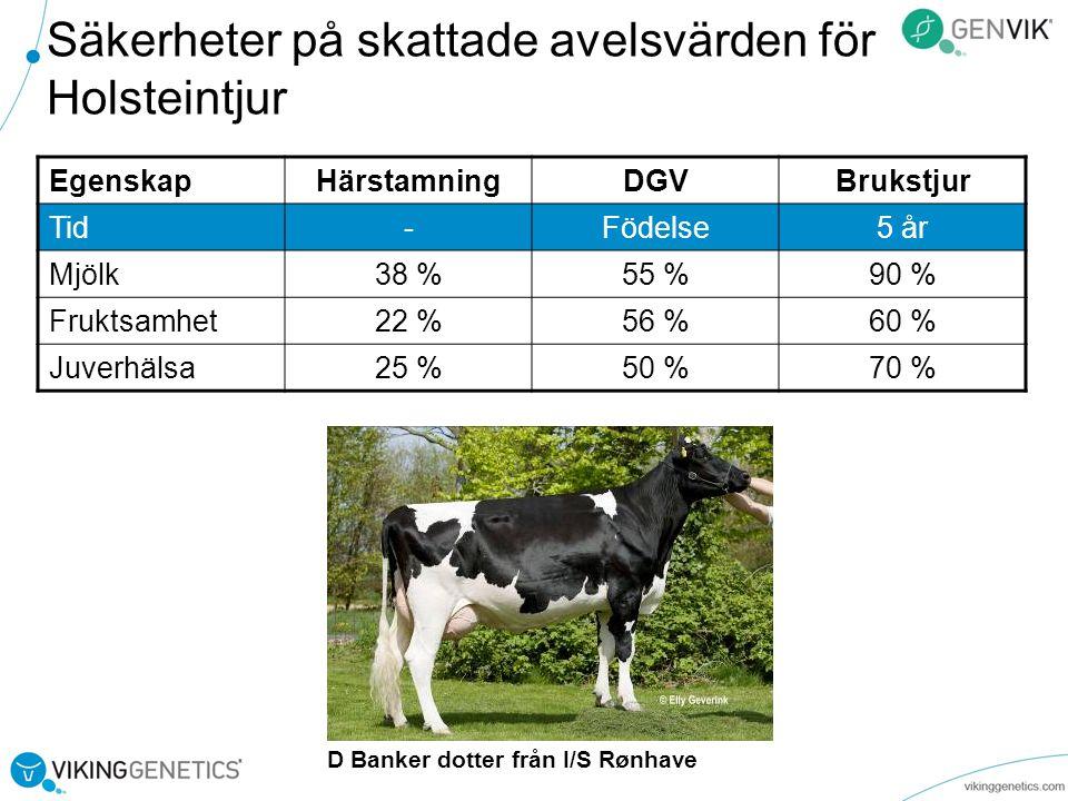 Säkerheter på skattade avelsvärden för Holsteintjur