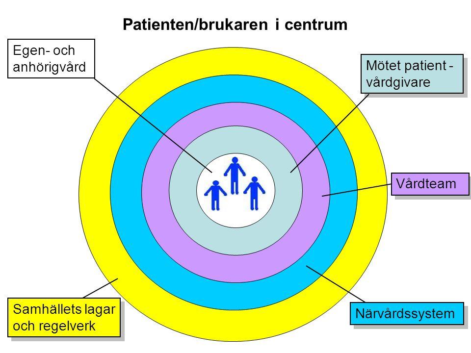 Patienten/brukaren i centrum