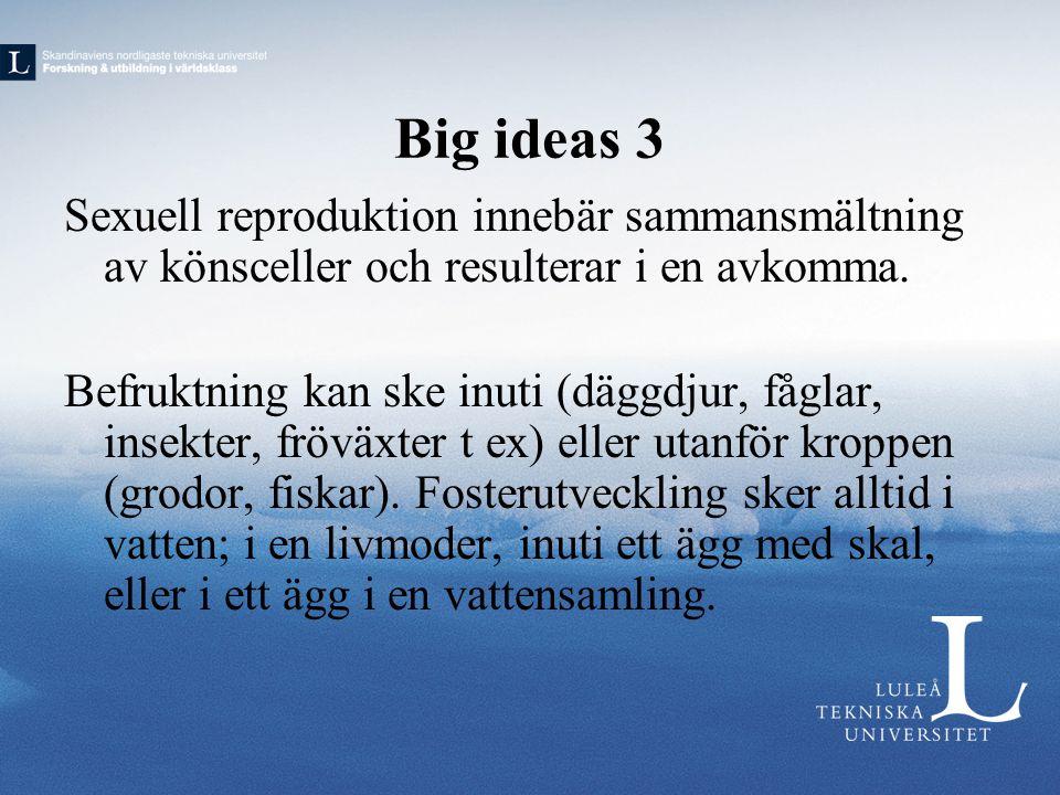Big ideas 3 Sexuell reproduktion innebär sammansmältning av könsceller och resulterar i en avkomma.