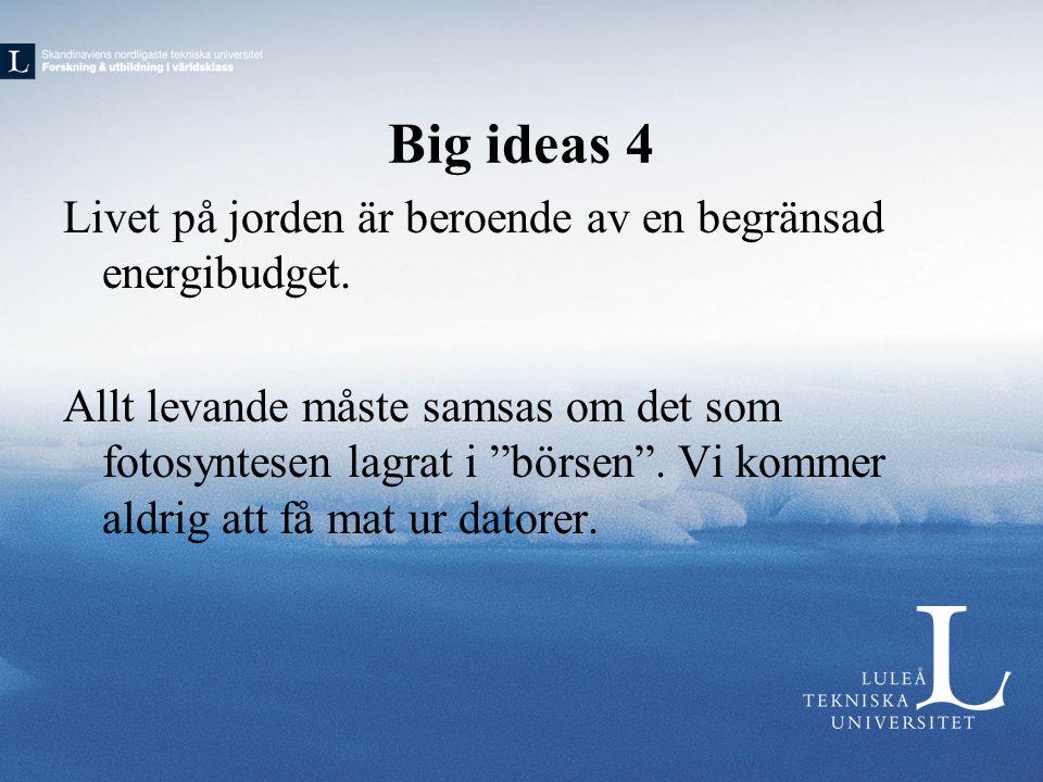 Big ideas 4 Livet på jorden är beroende av en begränsad energibudget.