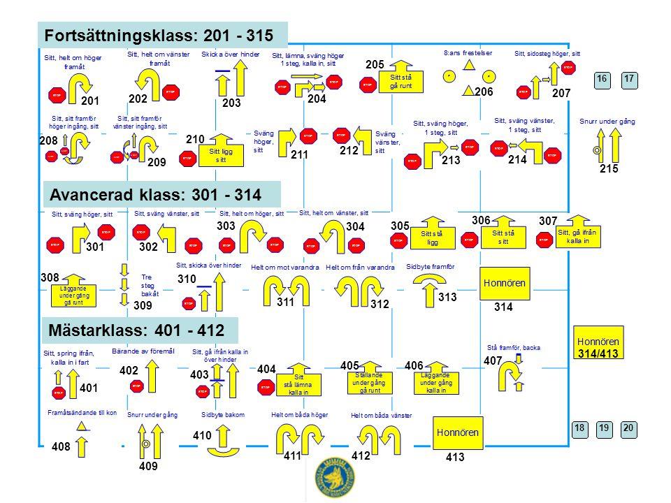 Fortsättningsklass: 201 - 315