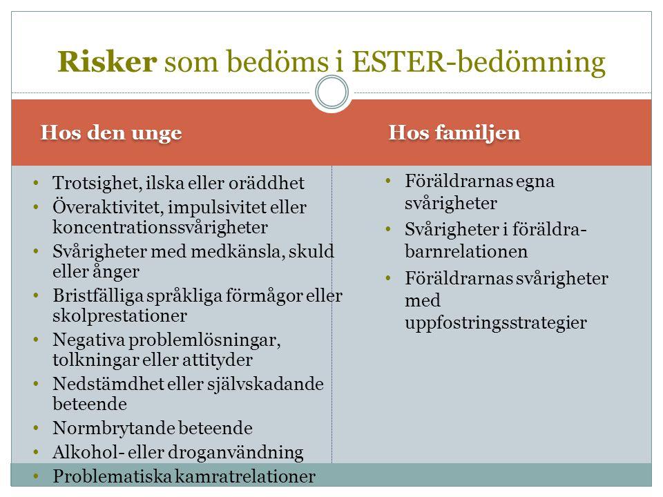 Risker som bedöms i ESTER-bedömning
