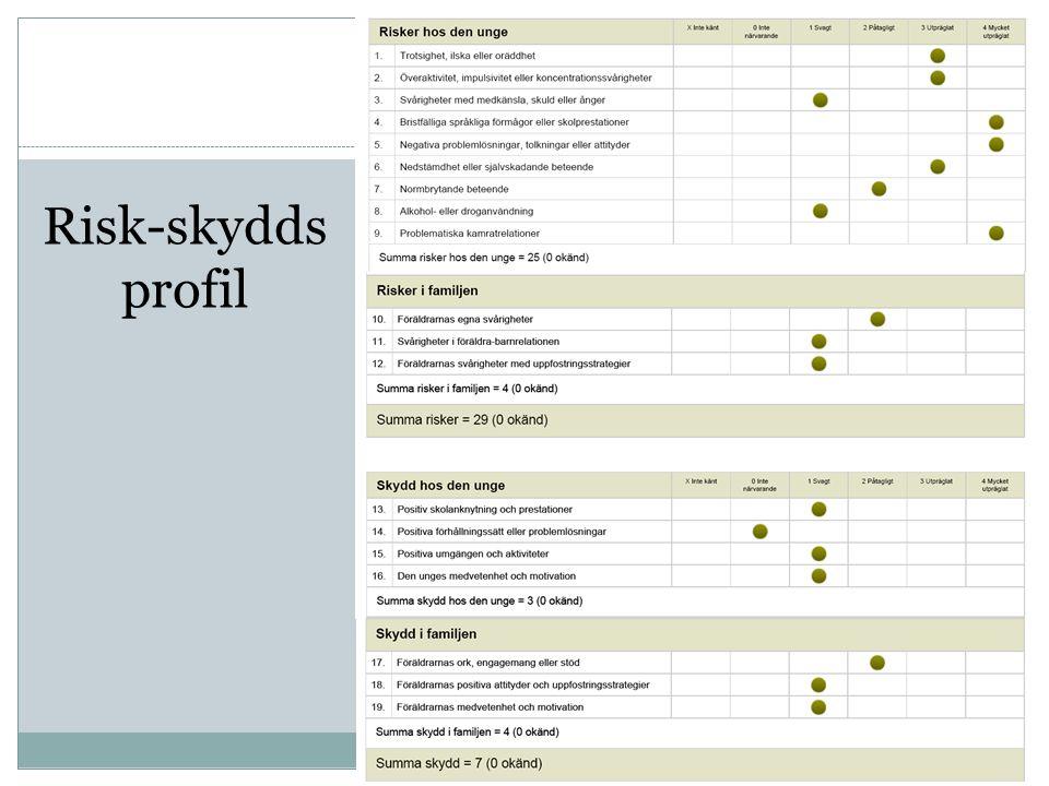 Risk-skydds profil