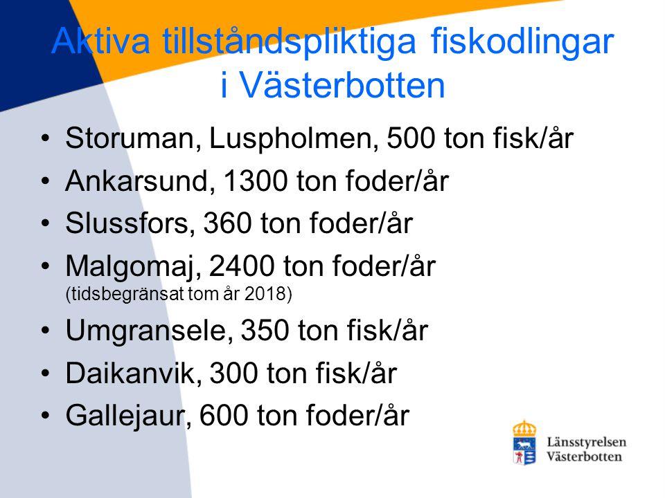 Aktiva tillståndspliktiga fiskodlingar i Västerbotten
