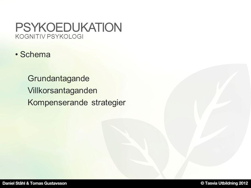 PSYKOEDUKATION Schema Grundantagande Villkorsantaganden