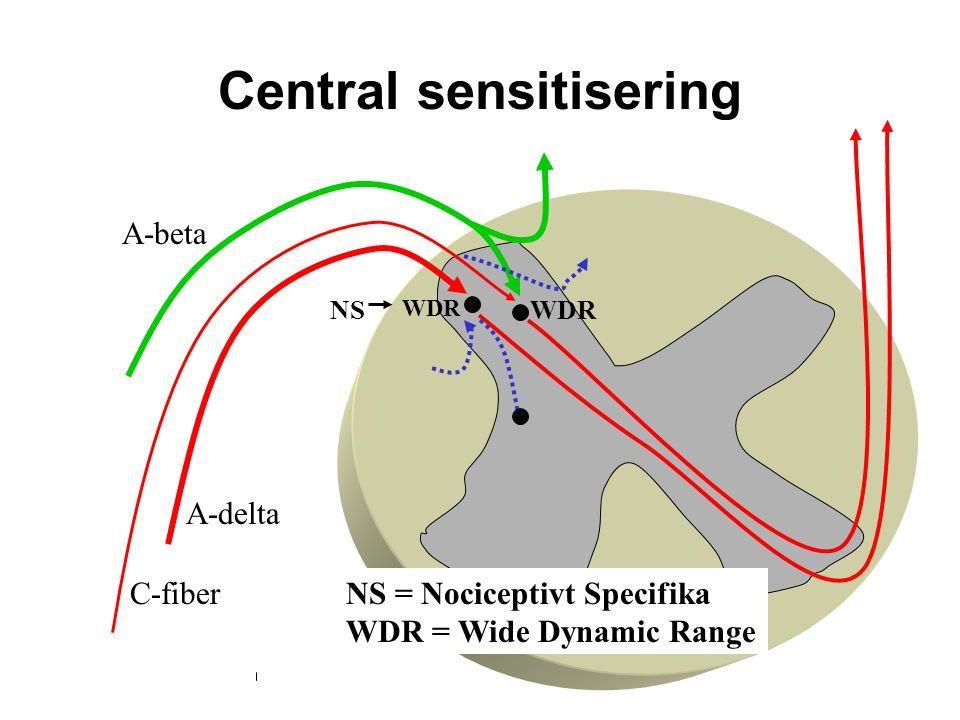 Central sensitisering