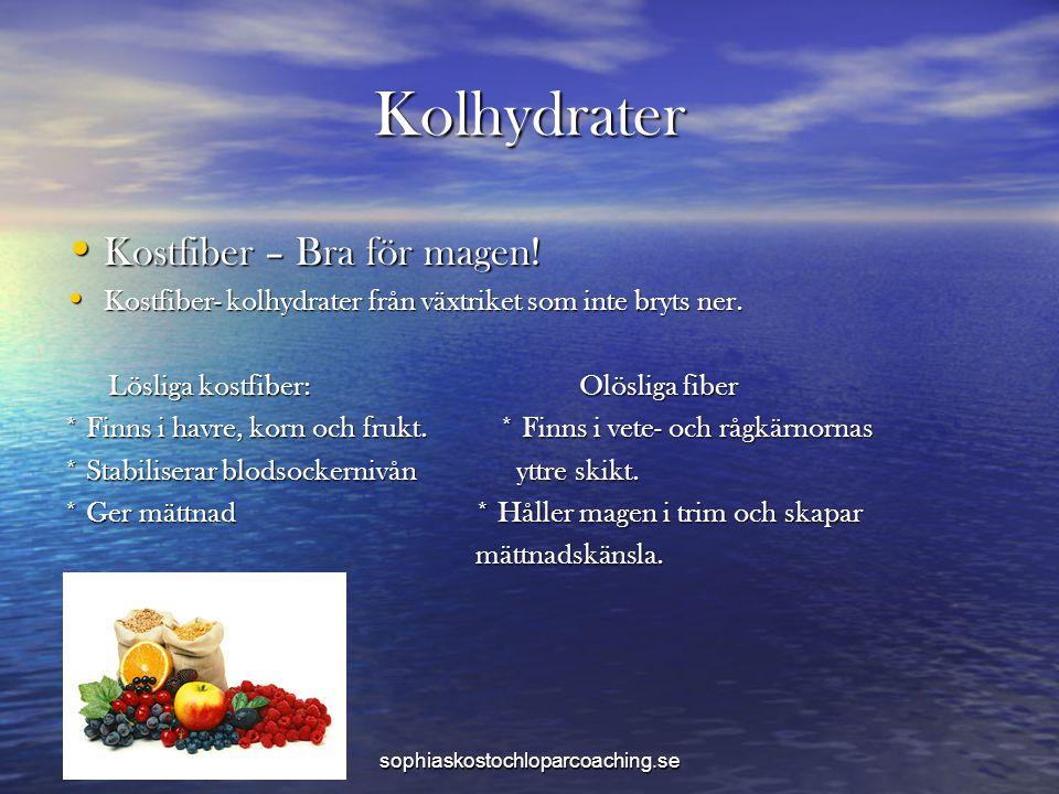 Kolhydrater Kostfiber – Bra för magen!