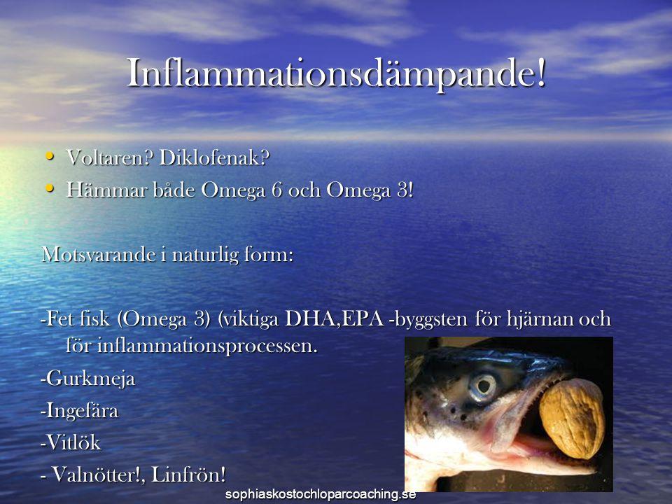 Inflammationsdämpande!