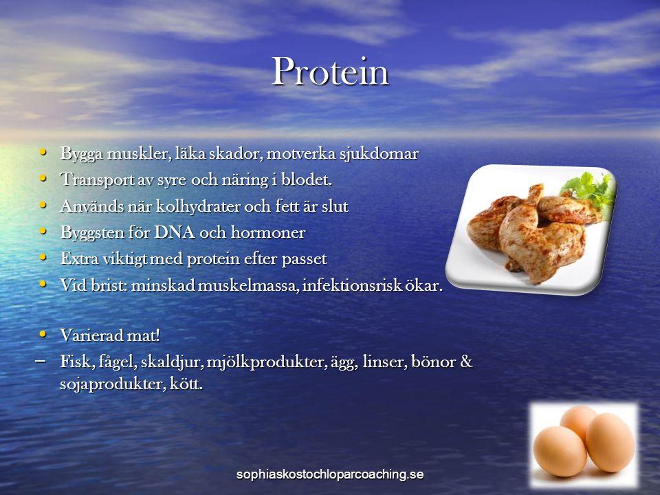 Protein Bygga muskler, läka skador, motverka sjukdomar