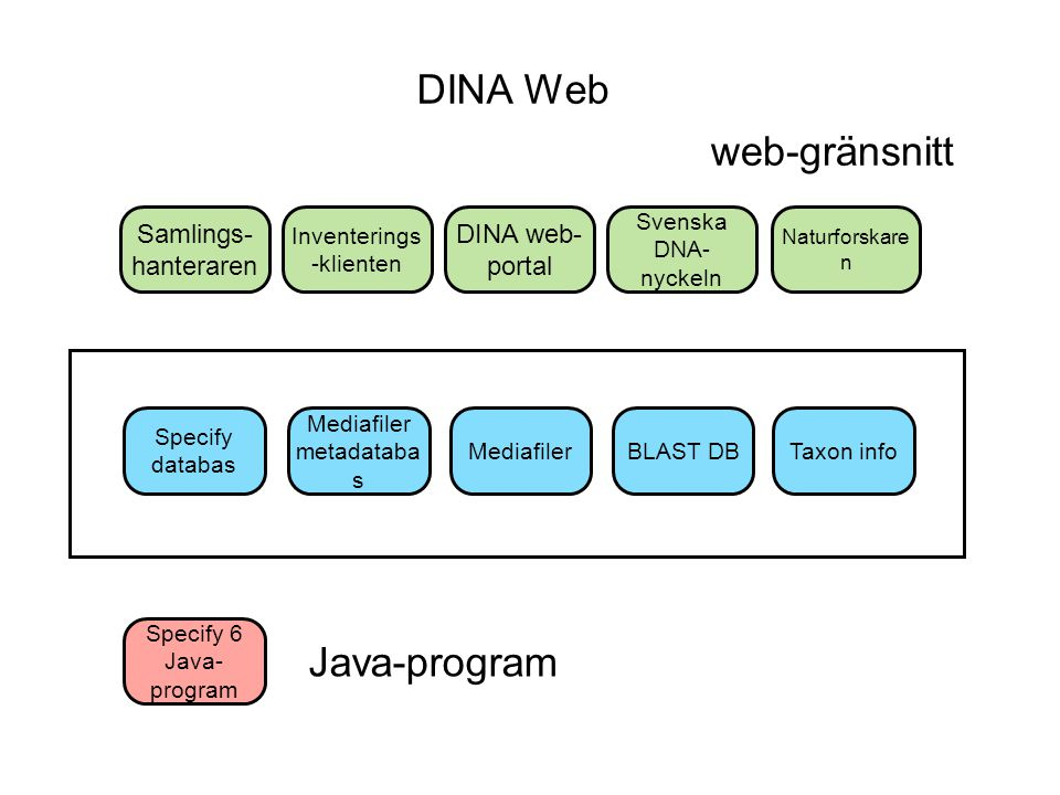 DINA Web web-gränsnitt Java-program Samlings-hanteraren
