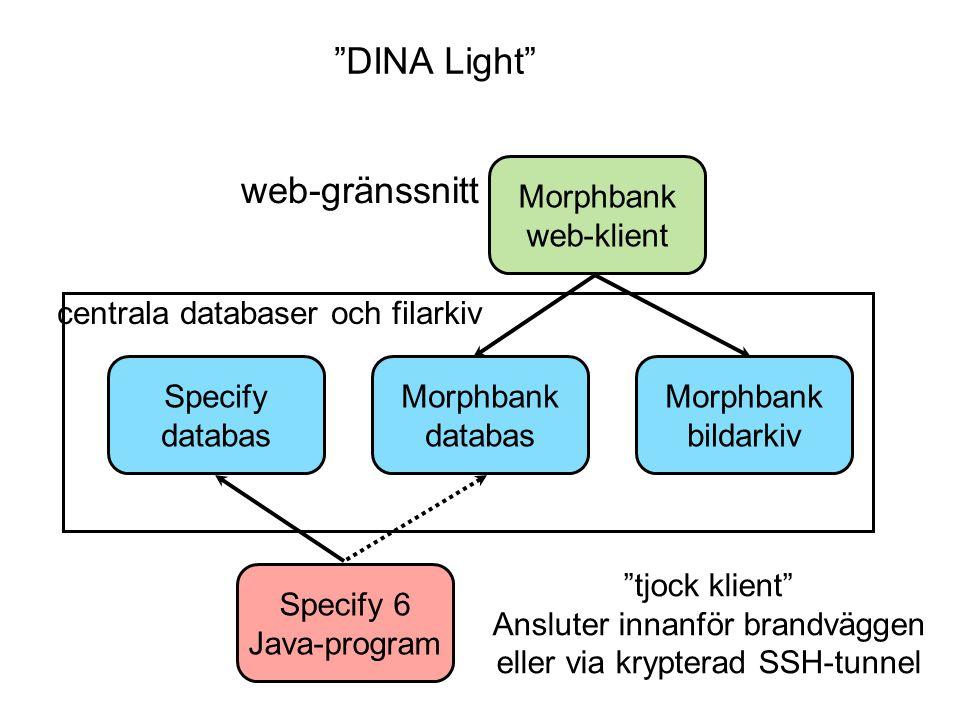 DINA Light web-gränssnitt Morphbank web-klient